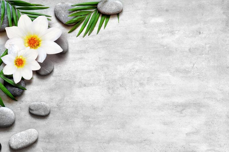 Flat lay composition with spa stones, flower and space for text on grey background stock images