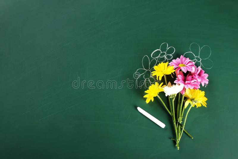 Flat lay composition for Teacher`s day stock image
