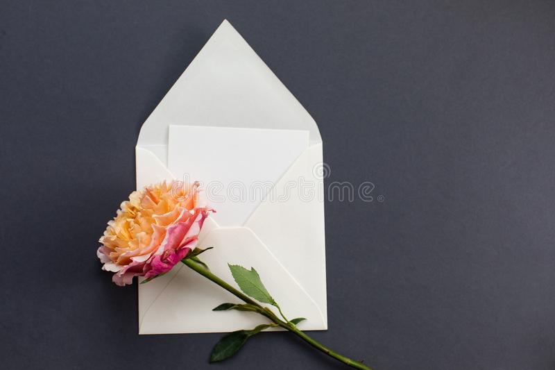Flat lay composition with a white envelope, blank card and a peony rose flower on a grey background. Mockup for wedding or royalty free stock photography