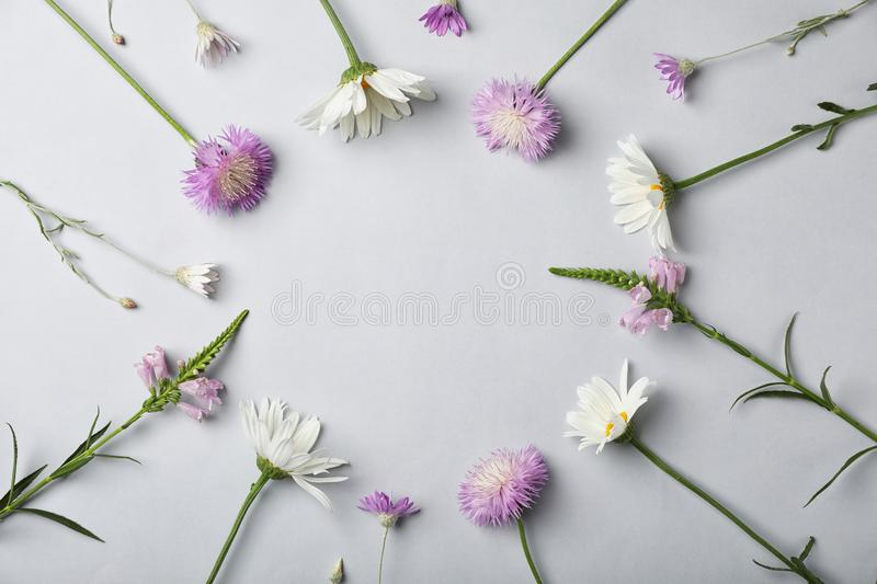 Flat lay composition with wild flowers royalty free stock photography