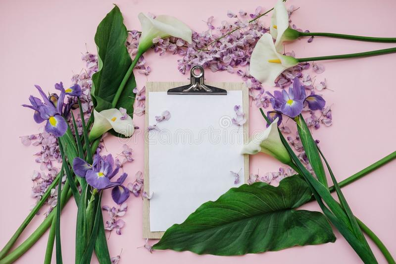 Flat lay composition with wisteria, irises, white callas on pink. Background. top view stock photo