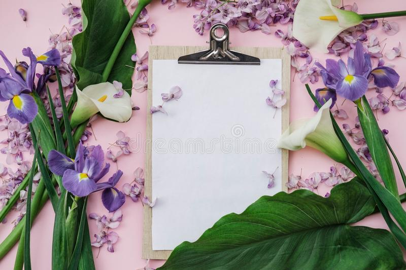 Flat lay composition with wisteria, irises, white callas on pink. Background. top view stock image