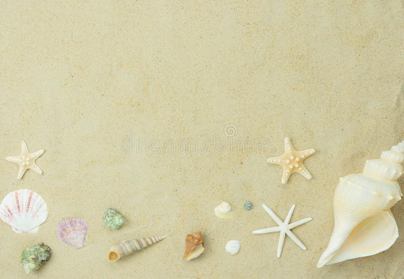 .Flat lay essentials accessories for travel to beach trip.Variety shell on white sand sea. royalty free stock photos