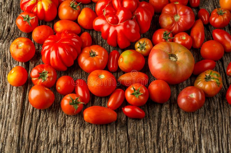 Flat-lay of fresh colorful ripe Fall or Summer heirloom tomatoes variety over rustic background, top view, copy space. royalty free stock photos