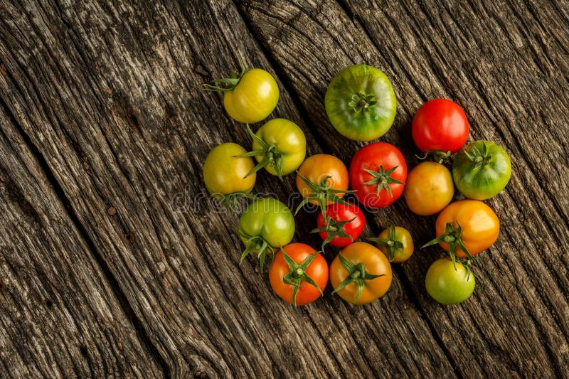 Flat-lay of fresh colorful ripe Fall or Summer heirloom tomatoes variety over rustic background, top view, copy space. royalty free stock images