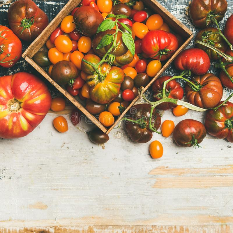 Flat -lay of fresh colorful ripe tomatoes, square crop stock photography