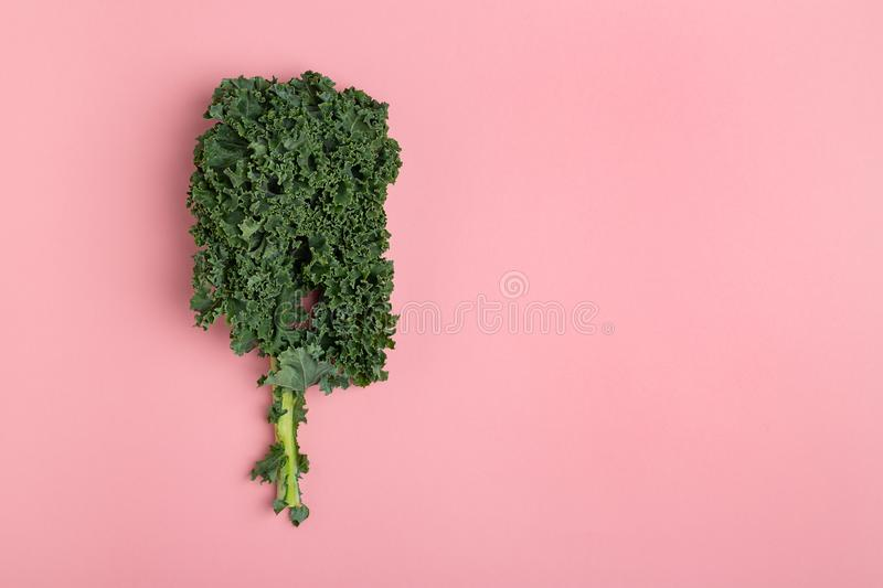 Flat lay fresh green kale on pink background. Top view with copy space stock images