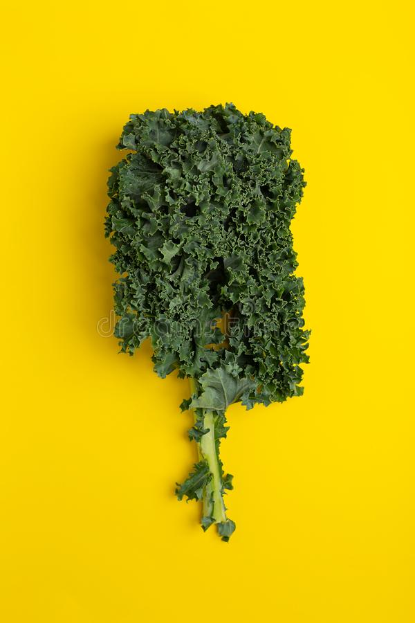Flat lay fresh green kale on yellow background. Top view royalty free stock photography