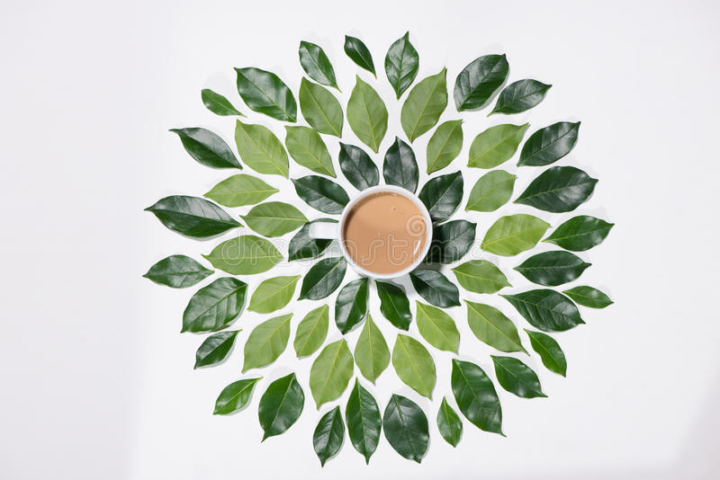 Flat lay of green leaves pattern with cup of coffee on white ba royalty free stock photo