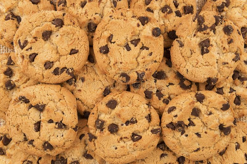Flat lay of homemade chocolate chip cookies. royalty free stock image