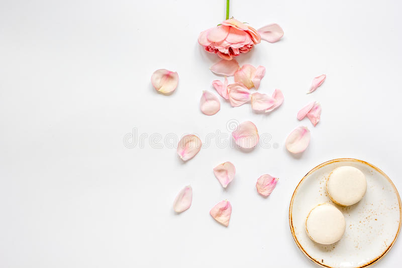 Flat lay with petals and macaroons on white background top view mockup stock images