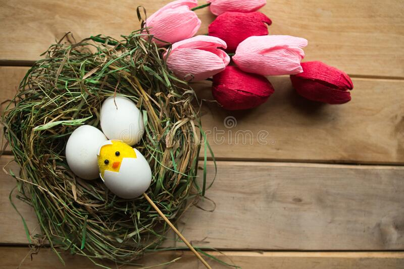 Flat lay photo with chicken eggs and toy chicken in straw nest and bouquet of tulips. Easter concept. Copy space royalty free stock photo