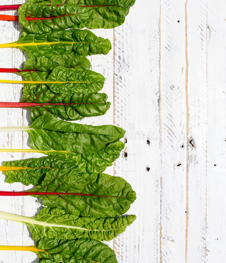 Flat lay rainbow swiss chard healthy diet recipes mock up white. Wood background with copy space royalty free stock image