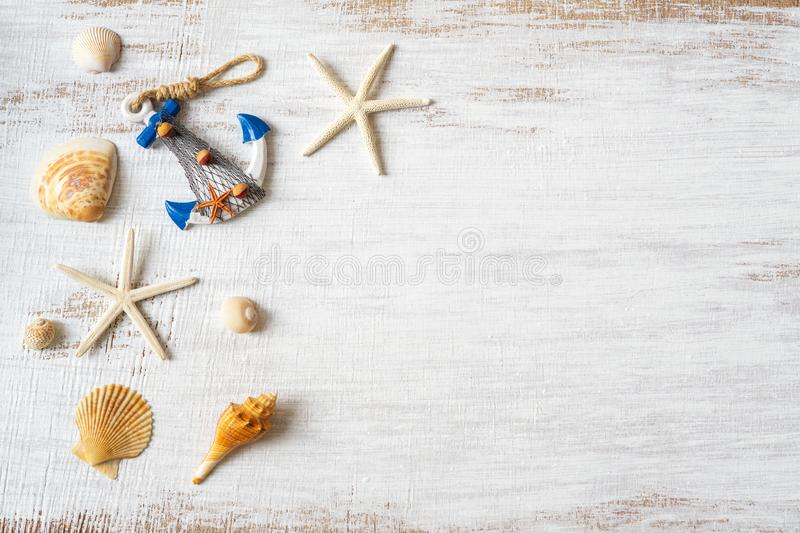 Flat lay of sea shells and starfish on grunge white wooden background. Background concept for Summer time holiday vacation. Sea royalty free stock image