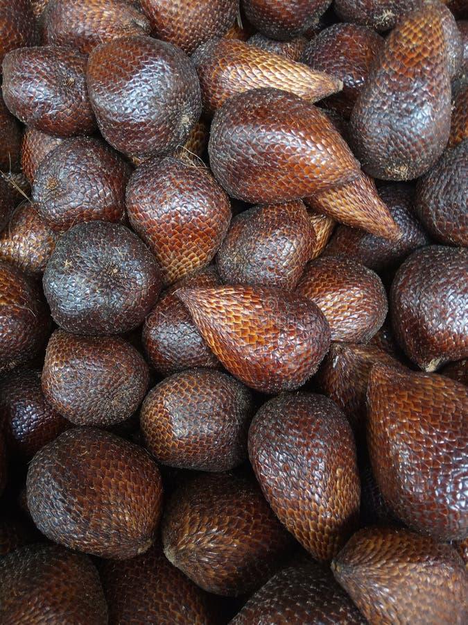 Flat Lay of Snake Fruits royalty free stock photo