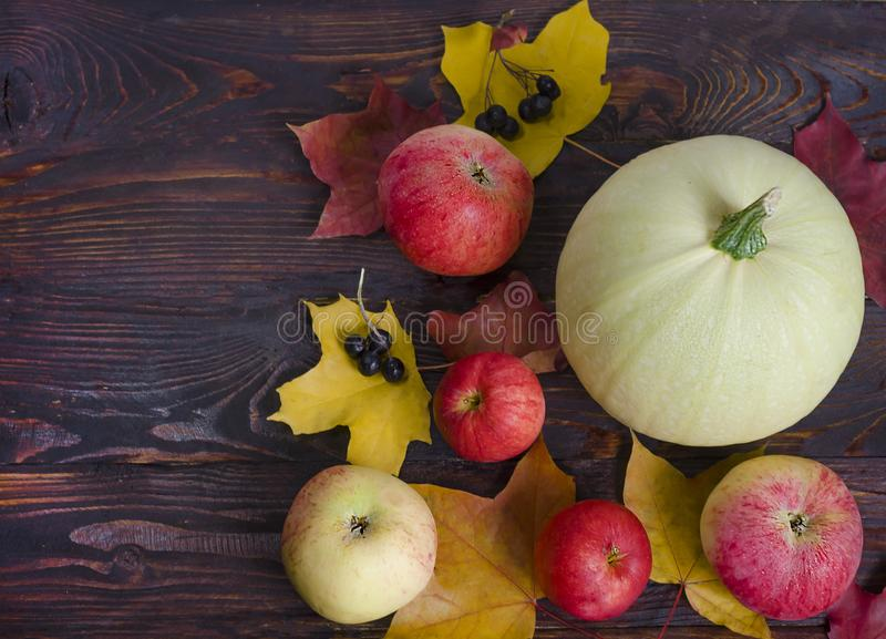 Flat lay, top view autumn harvest composition, ripe vegetables and fruits, apples, zucchini, colorful leaves on a dark wooden stock photo