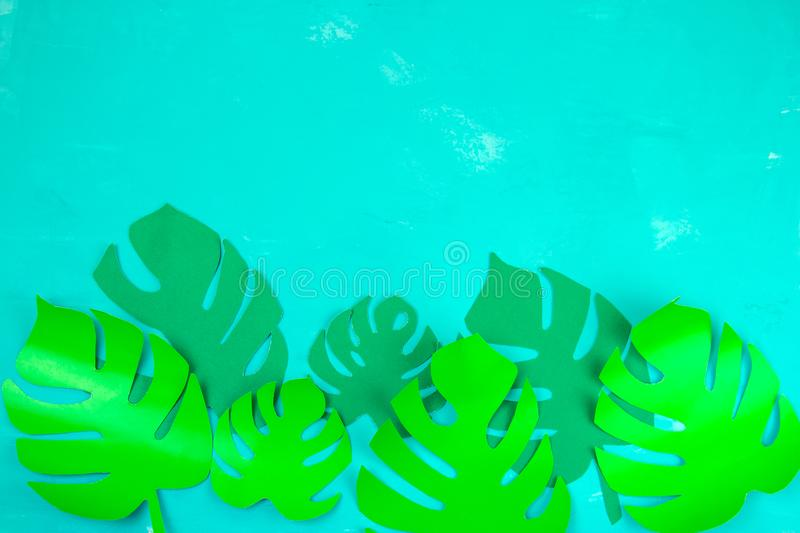 Paper cut monstera tropical green leaves on a vibrant blue background copy space. Flat lay top view paper cut monstera tropical green leaves on a vibrant blue royalty free stock images