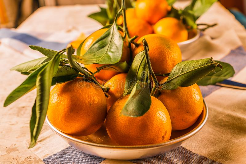 Orange ripe mandarin fruits with green leaves in a bowl, over rustic white wooden background. stock images