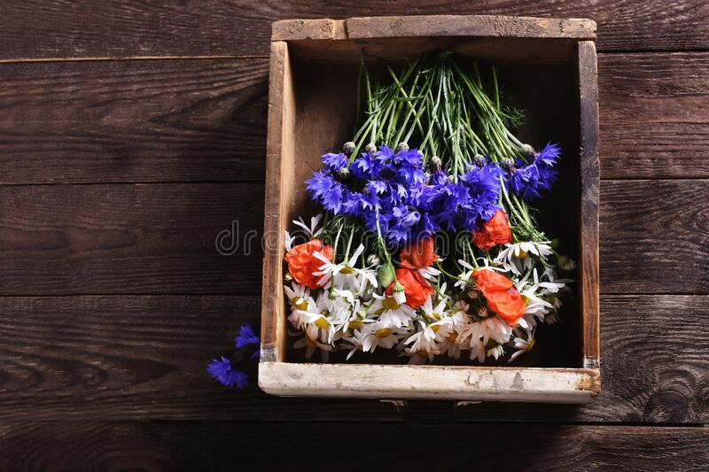 Flat lay with wildflowers in vintage wooden drawer royalty free stock photography