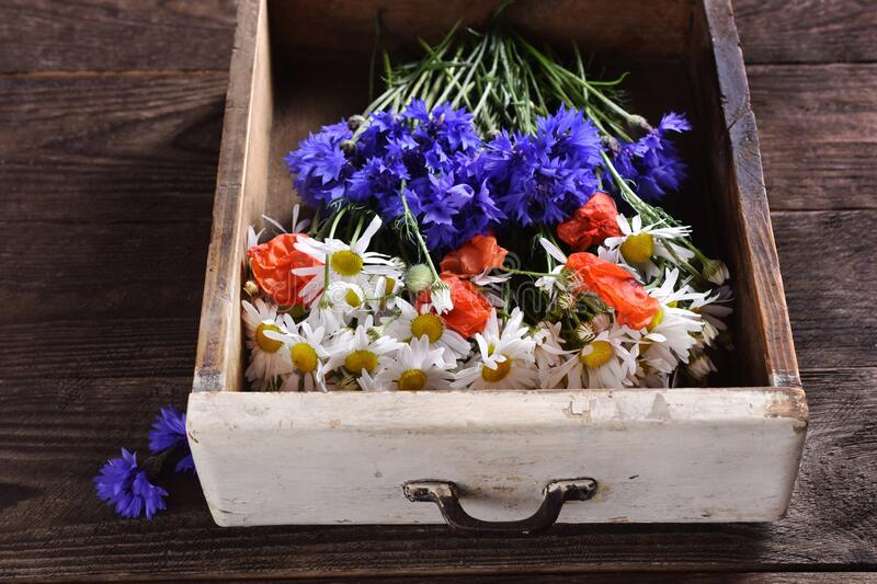 Flat lay with wildflowers in vintage wooden drawer royalty free stock photo