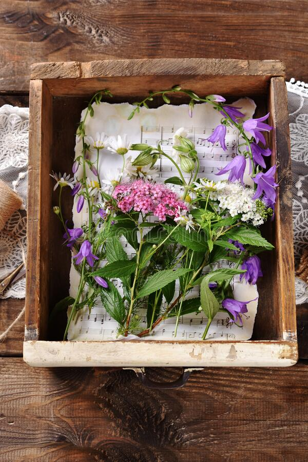 Flat lay with wildflowers in vintage wooden drawer royalty free stock images