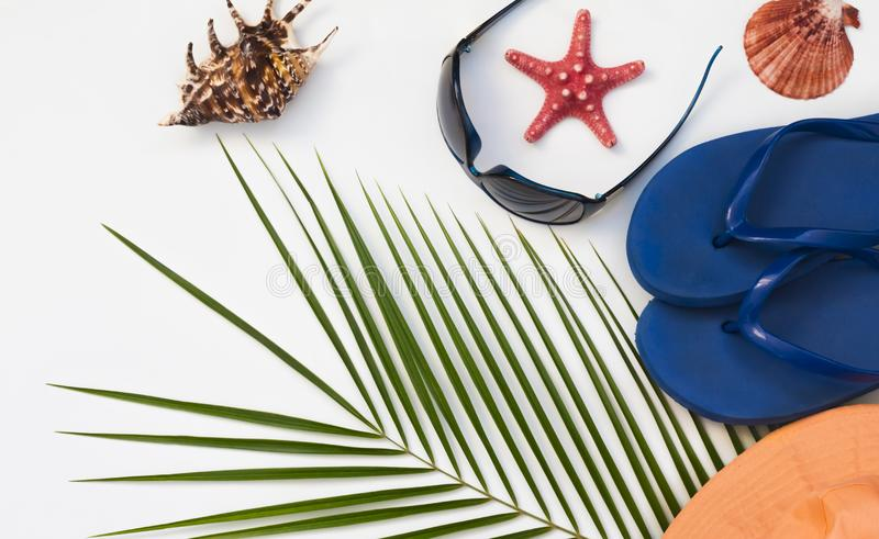 Flat layout, tropical palm tree background, travel and beach holiday concept on white background with copy space royalty free stock photos