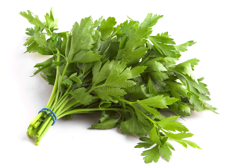 Download Flat Leaf Parsley Stock Images - Image: 2185394