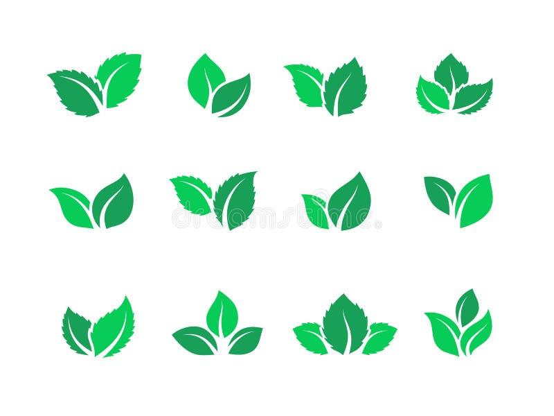 Flat leaves set. Vegan green food logos, farm plant eco energy, simple forest leaf herbal tea label. Vector set of green stock illustration