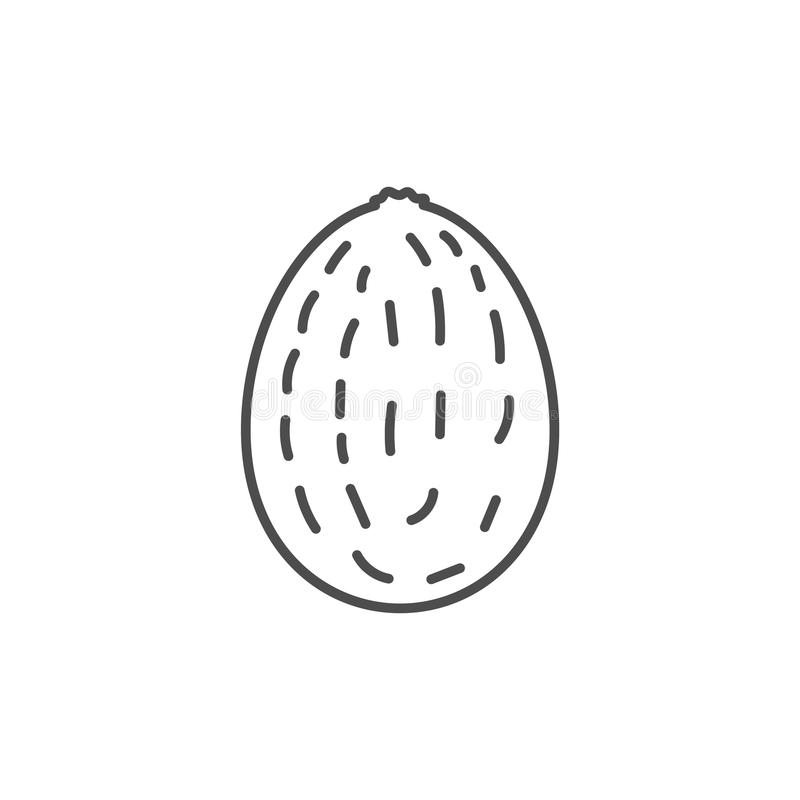 Flat outlined kiwi icon vector illustration