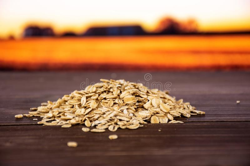 Flat raw rolled oats with autumn field behind royalty free stock photography