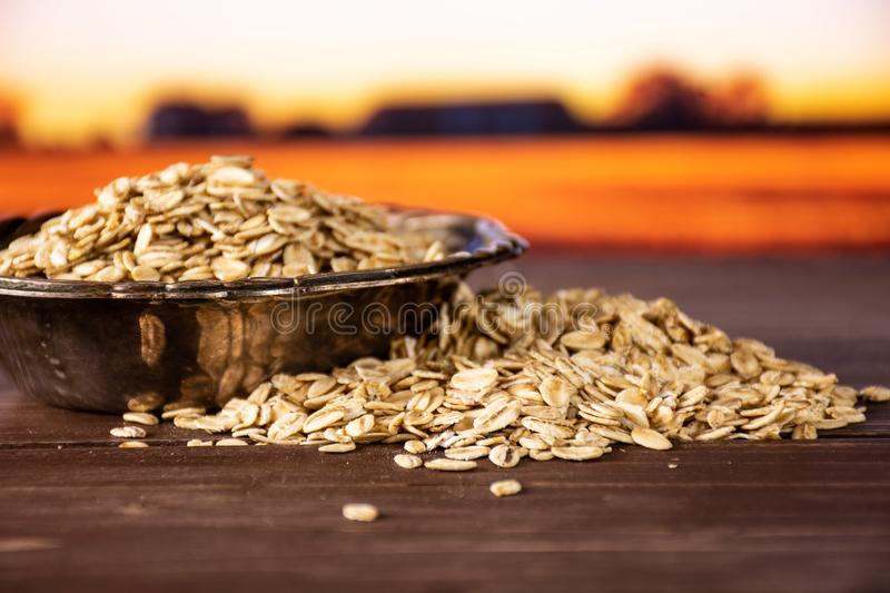 Flat raw rolled oats with autumn field behind royalty free stock photos