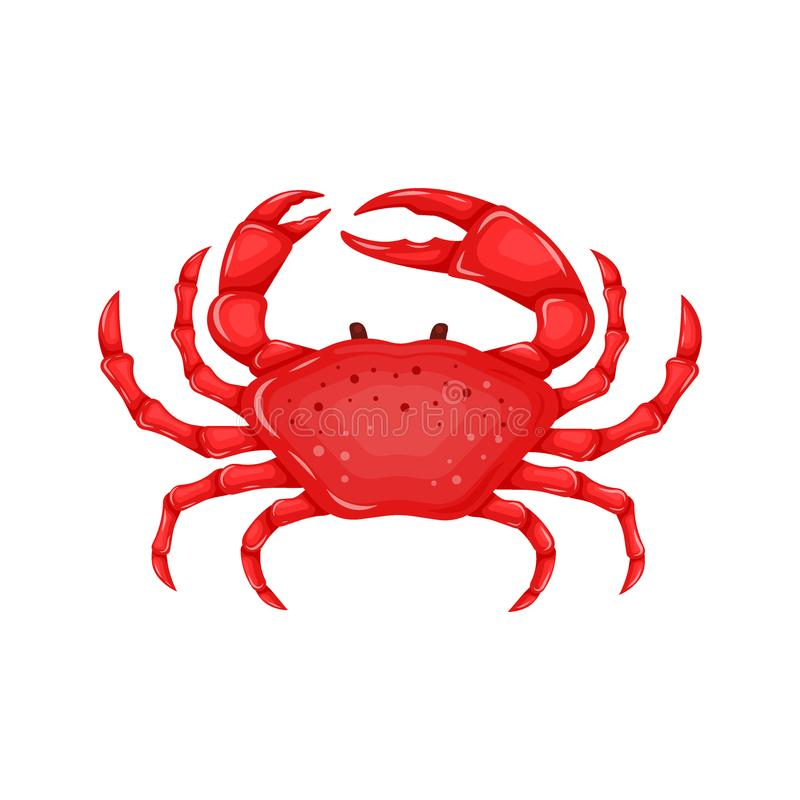 Flat red crab isolated on white background - vector illustration. Sea water animal icon with claws. Seafood product royalty free illustration