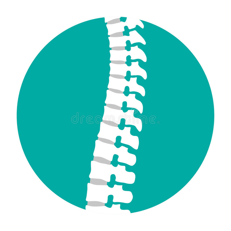 Flat spine icon for orthopedic therapy, diagnostic center. royalty free illustration
