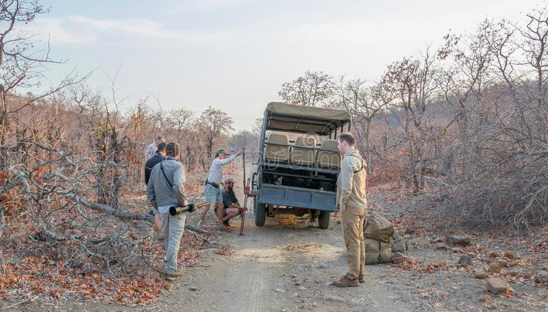 Flat tyre on a game drive vehicle in Kruger National Park in South Africa stock images