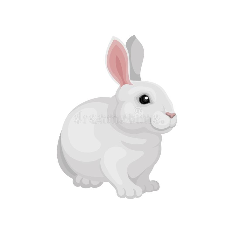 Flat vector design of adorable rabbit. Cute mammal animal. White bunny with long pink ears. Home pet stock illustration