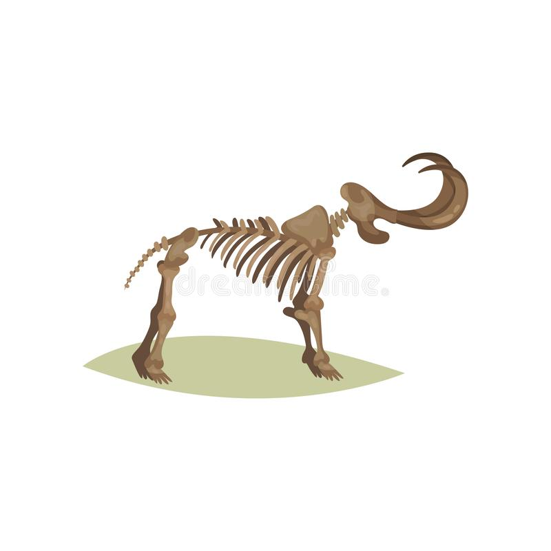 Flat vector icon of mammoth skeleton. Bones of prehistoric animal. Object of paleontology museum stock illustration
