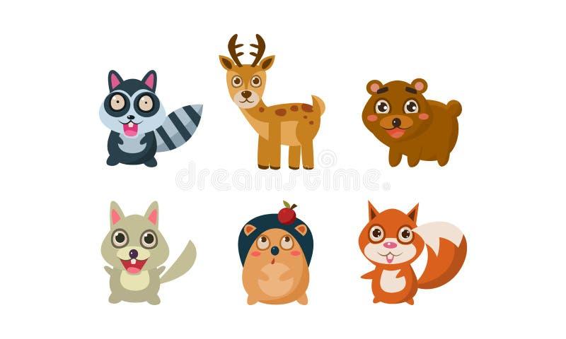 Flat vector set of adorable forest animals. Raccoon, deer, bear, wolf, hedgehog and fox. Wildlife and fauna theme. Collection of adorable forest animals. Raccoon vector illustration