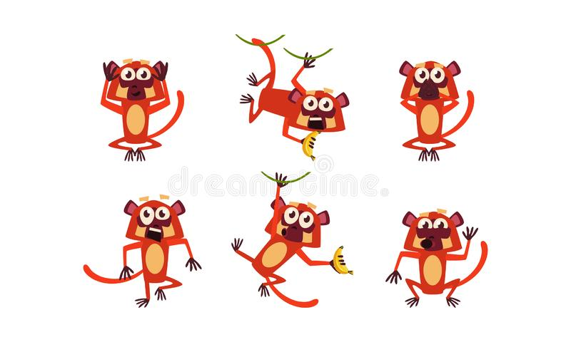 Flat vector set of brown lemur with various emotions. Monkey in different poses. Wild animal. Funny cartoon character royalty free illustration