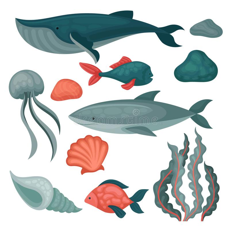 Flat vector set of sea animals and objects. Big and small fishes, jellyfish, stones, seaweed and marine shells. Set of sea animals and objects. Big and small royalty free illustration