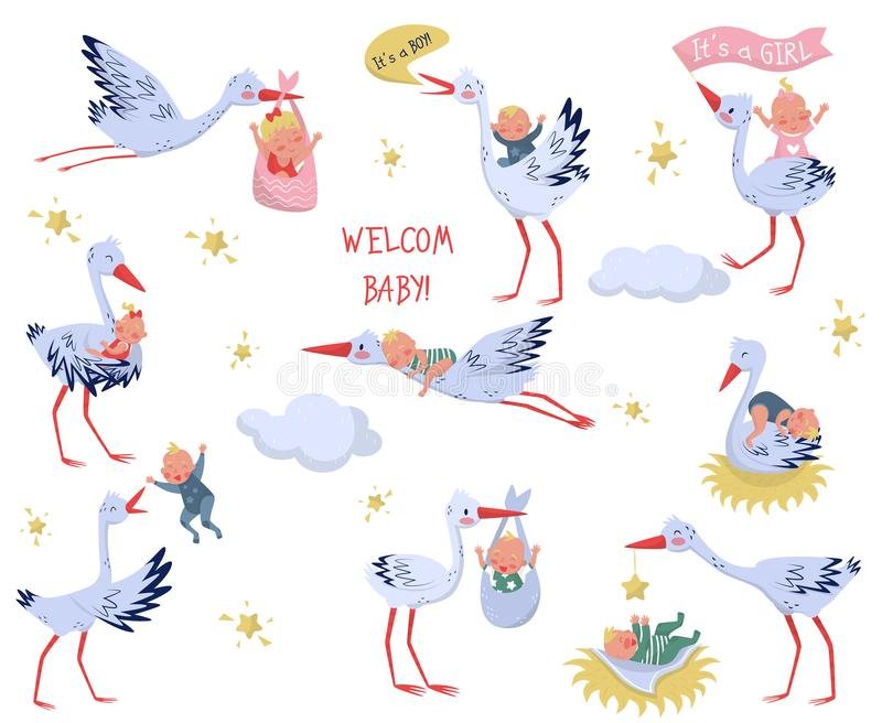 Flat vector set of white storks with babies. Lovely birds and newborn kids. Elements for children book or greeting card. Set of white storks with babies. Lovely royalty free illustration