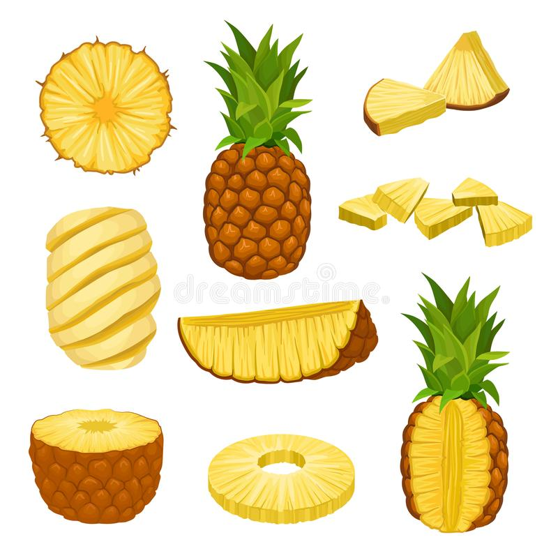 Flat vector set of whole, halves and chopped pineapples. Fresh and juicy tropical fruit. Elements for packaging design. Set of whole, halves and chopped royalty free illustration