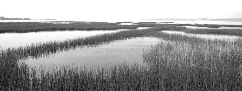 Flathead jezioro przy Ducharme dostępem blisko Polson Montana Stany Zjednoczone - czarny i biały obrazy royalty free