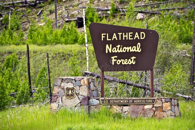 Flathead las państwowy zdjęcia royalty free