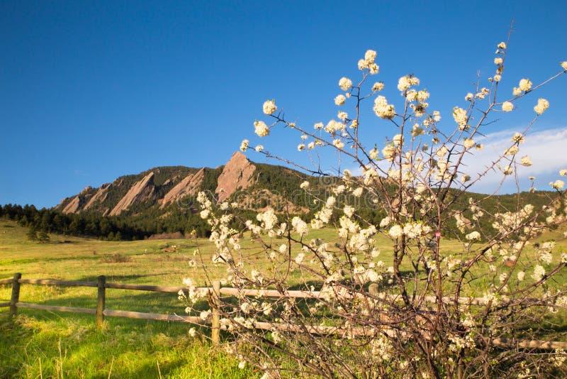 Flatirons Boulder Colorado Chautauqua Park stock photos