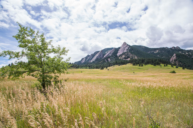 The Flatirons near Boulder, Colorado royalty free stock photo