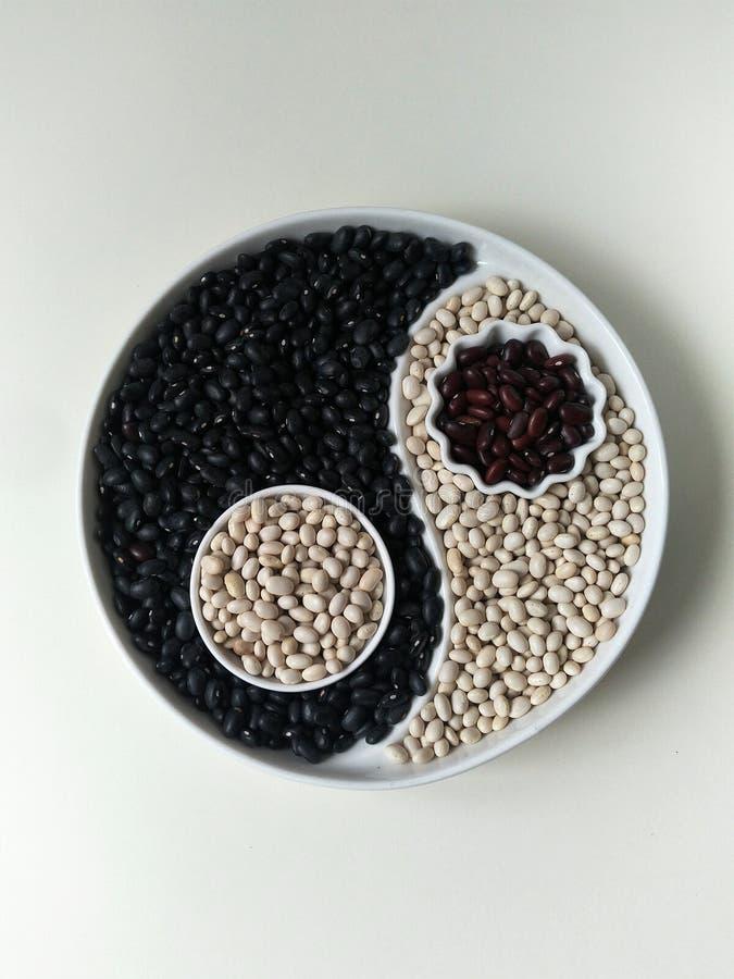 Flatlay,顶视图,豆,白色扁豆的三种颜色在阴山杨板材的,计划黑菜豆,红色扁豆,计划 免版税库存照片