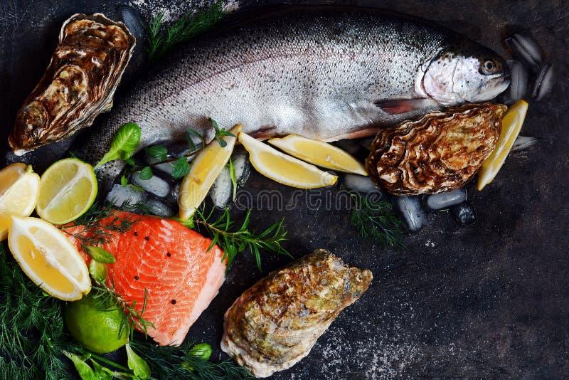 flatlay Composizione di frutti di mare freschi su un fondo scuro Trota ed ostriche con le erbe ed il limone fotografia stock
