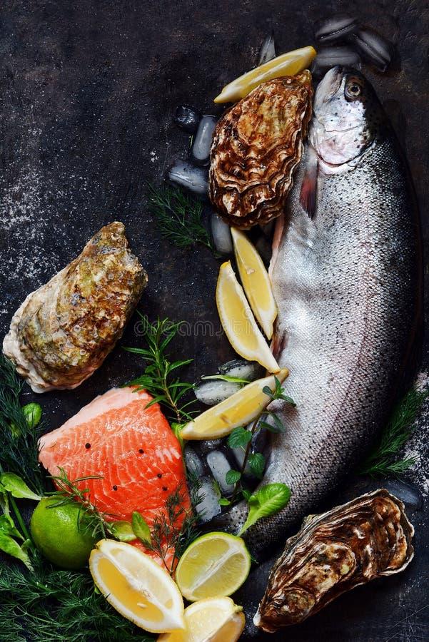 flatlay Composizione di frutti di mare freschi su un fondo scuro Trota ed ostriche con le erbe ed il limone immagine stock libera da diritti