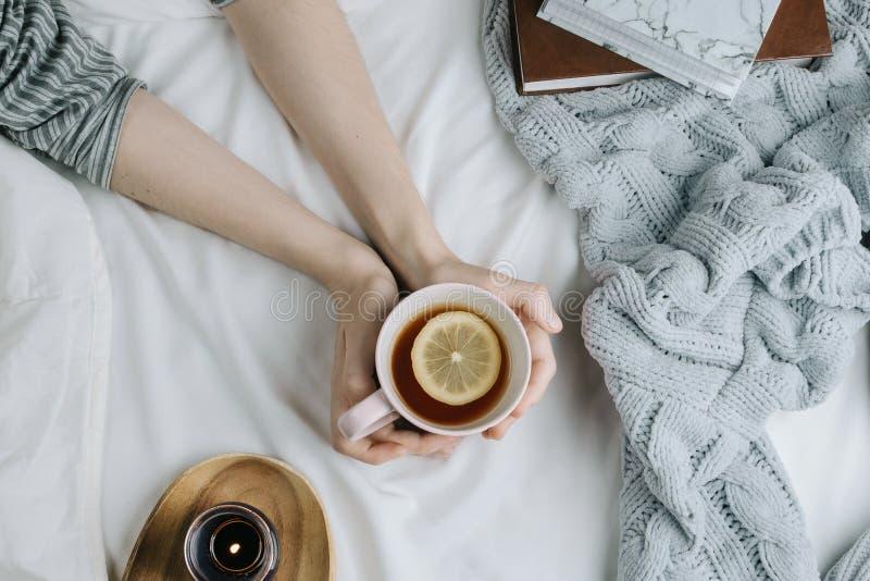 Flatlay confortable de la main du ` s de femme tenant le thé de citron dans le lit avec les feuilles et la couverture blanches photo stock