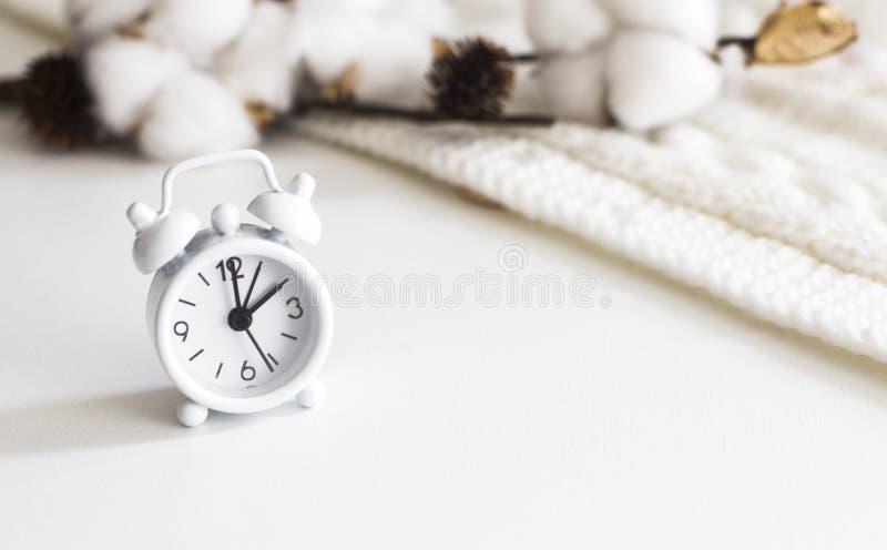 Flatlay de escritorio: Concepto de la mañana, despertador, rama del algodón imagen de archivo libre de regalías
